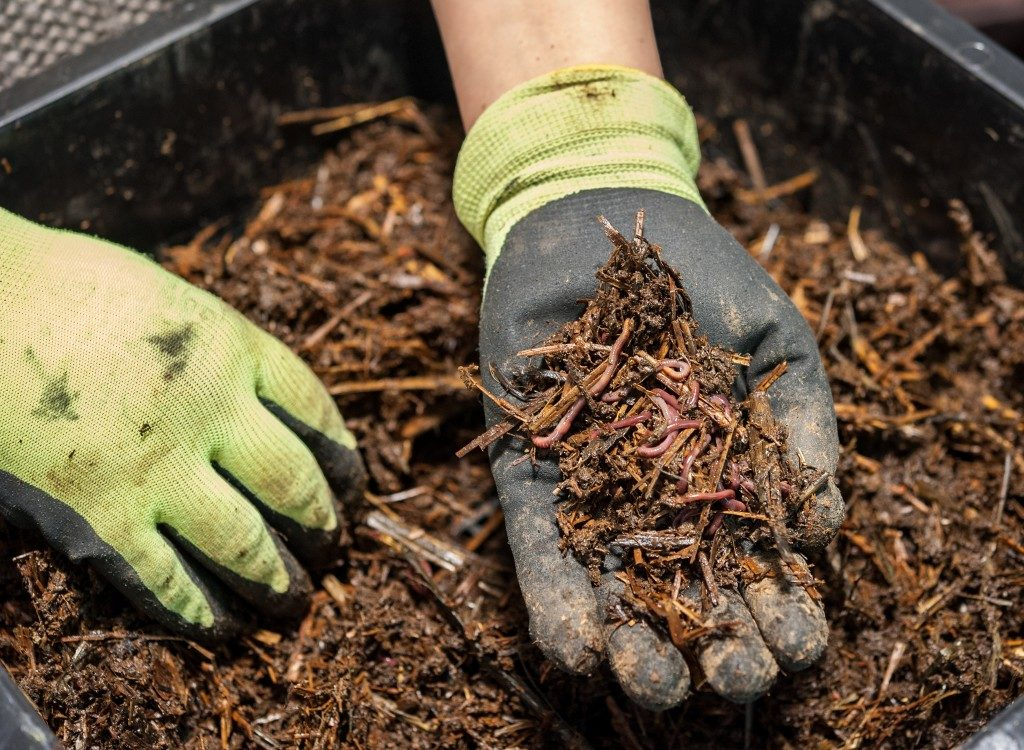 Making composte by using organic waste